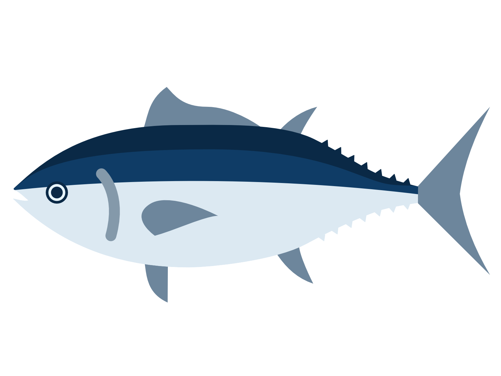 Tuna is safe and healthy?